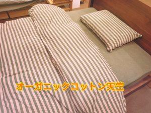 16-09-06-16-55-10-059_deco